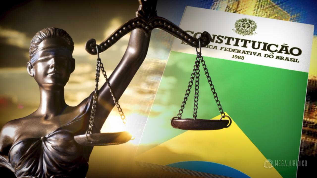 Direito e Vulnerabilidades: O Direito Penal Constitucional e o Estado Democrático de Direito