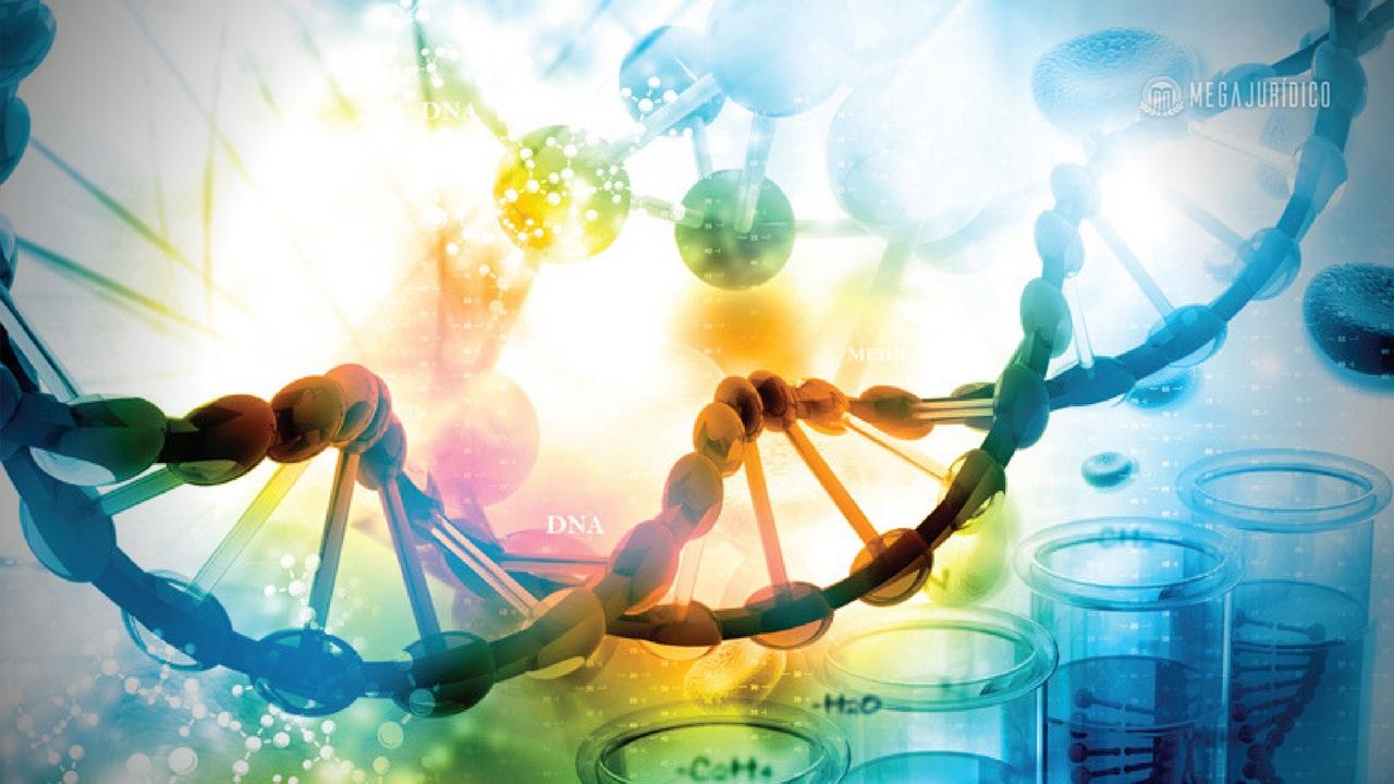 A Bioética e o Direito