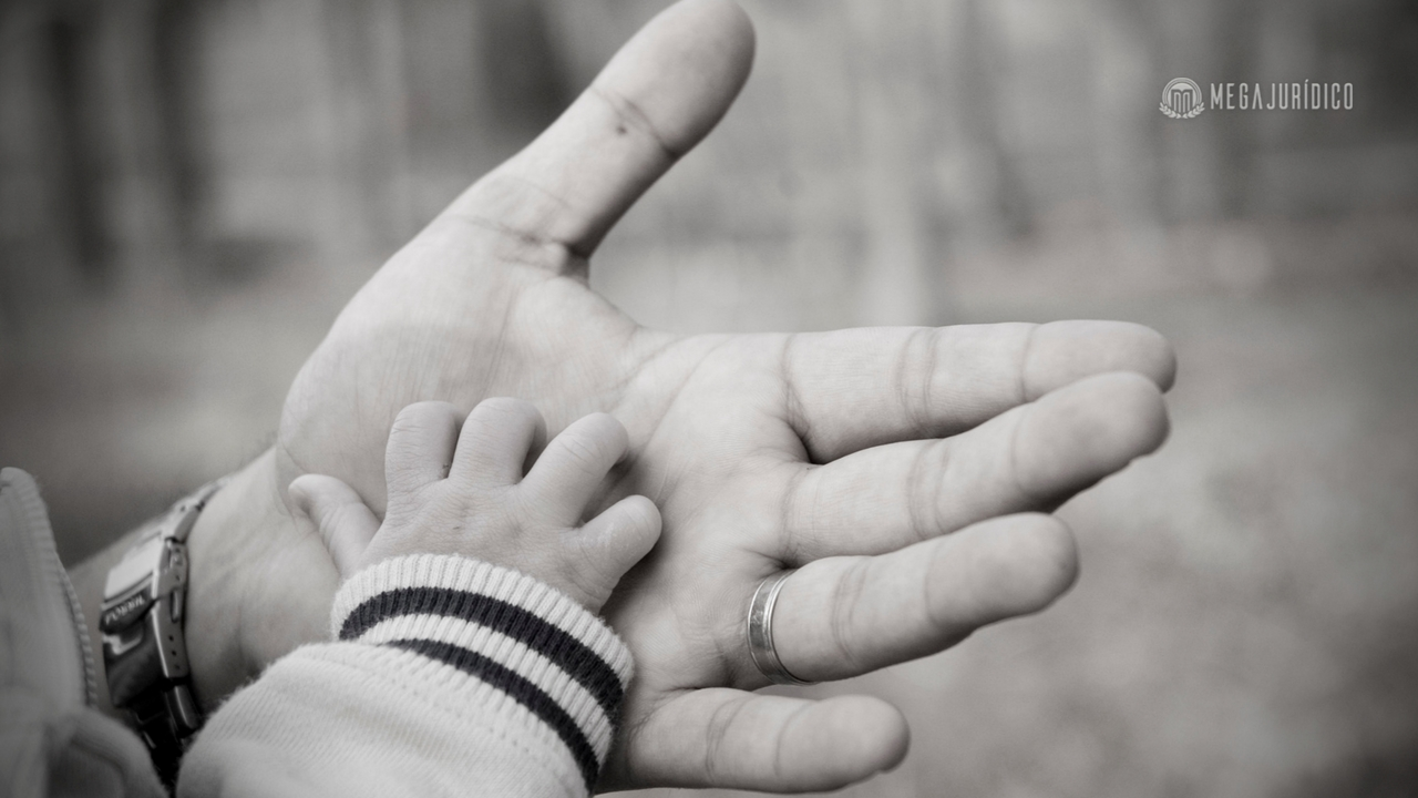 Filho adotado deve ser excluído da condição de herdeiro do pai biológico